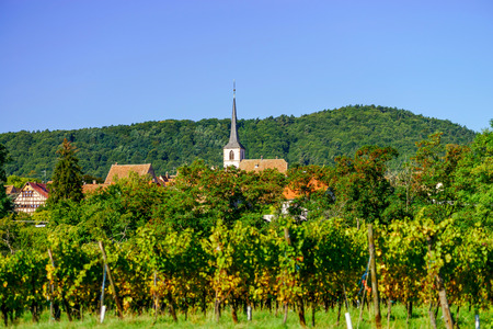 green hills: Beautiful alsacien autumnal landscape with green hills and vineyards, France Stock Photo