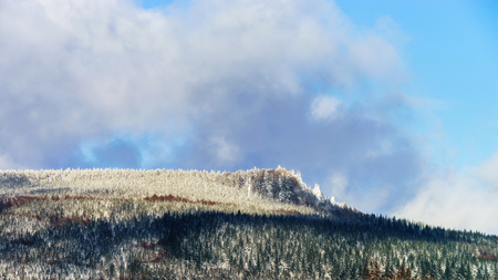 mistery: Beautiful slope of hill with winter trees in snow, season and weater concept