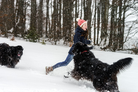 flurry: Two sisters playing in snow with newfoundlander dog, winter and leisure