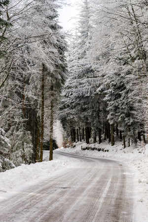 greasy: Greasy winter road in beautiful forest, dangerous riding Stock Photo