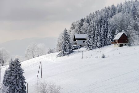flank: Snow-covered flank of hill, winter fairy tale