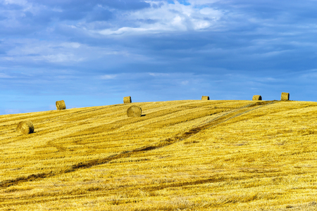 Beautiful yellow hill with haystacks at sunset, agricultural concept, France Stock Photo