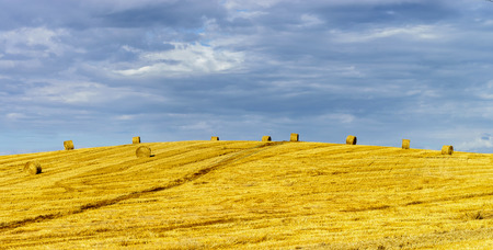 hayrick: Beautiful yellow hill with haystacks at sunset, agricultural concept, France Stock Photo
