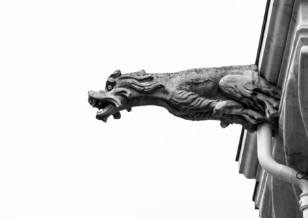 gargouille: Beautiful animal gargoyle on medieval church, Nancy, France
