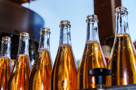 storehouse: Champagne producing and bottling in Alsace, France. Small wine-producing business.