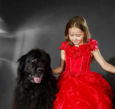 Beauty and the Beast. Little girl with big black water-dog portrait, isolated on grey