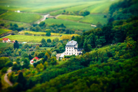 tilt views: Aerial panoramic tilt-shift view to village Ribeauville from drone, Alsace, France