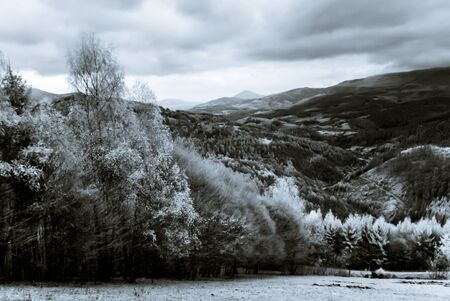Bea Beautiful natural landscape in infrared view, Vosges mountains