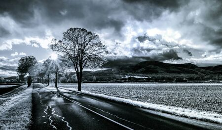 Contrast infrared view of the road in countryside, Alsace, France