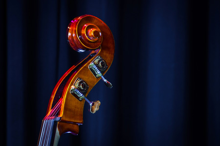 Classical double-bass instrument close-up view, music concept