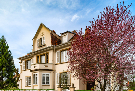 fasade: Classic french house in residential district of Strasbourg, blossom spring time, flowering and gardening. France. Stock Photo
