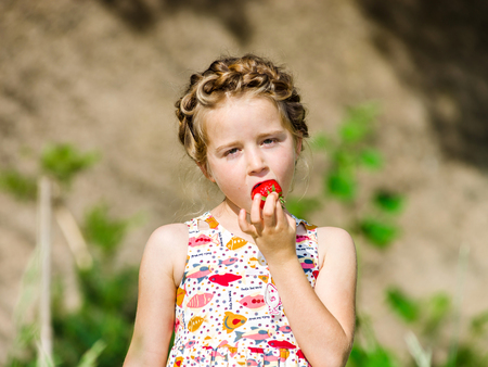 bunches: Cute little girl posing with fresh red strawberry in the sunny garden, hairdress bunches style