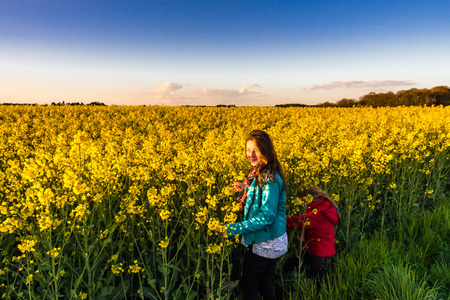Teenage girl with long hair in yellow bittercress field, sunset time photo