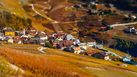 Tilt-shift aerial view of autumnal vineyards in Switzerland, miniature roads and houses