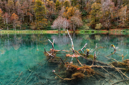 Natural autumnal landscape, lake in the high mountains, Lac de Bethmale, Pyrenees, France Stock Photo
