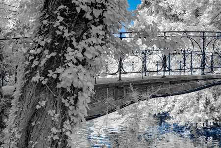 Natural public park in Strasbourg, infrared view, sunny day, France