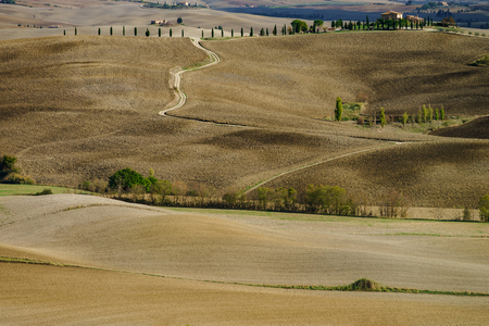 Autumn in Italy. Yellow plowed hills of Tuscany with interesting shadows and lines. Agricultural concept landscape. Imagens