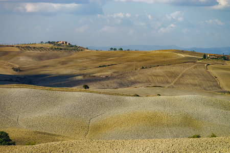 Autumn in Italy. Yellow plowed hills of Tuscany with interesting shadows and lines. Agricultural concept landscape. Stockfoto