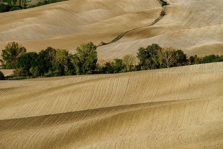 Abstract view of yellow and brown hills of Tuscane, autumn, Italy