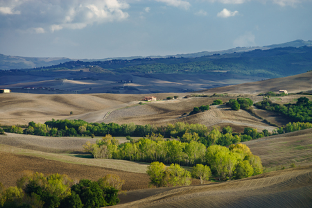 Autumn in Italy. Yellow plowed hills of Tuscany with interesting shadows and lines. Agricultural concept landscape. Stok Fotoğraf