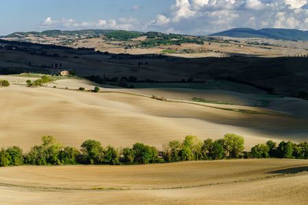 Autumn in Italy. Yellow plowed hills of Tuscany with interesting shadows and lines. Agricultural concept landscape. Stockfoto - 118125492