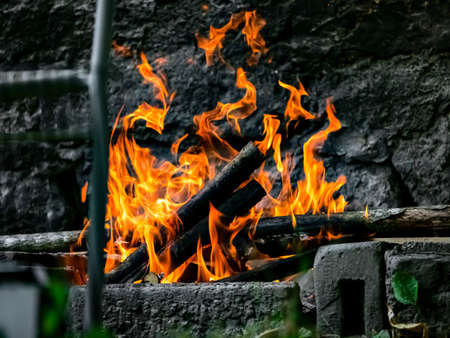Sausages, chicken and meat are grilled on the fire, BBQ in the garden. Beautiful flame. Natural food. 免版税图像