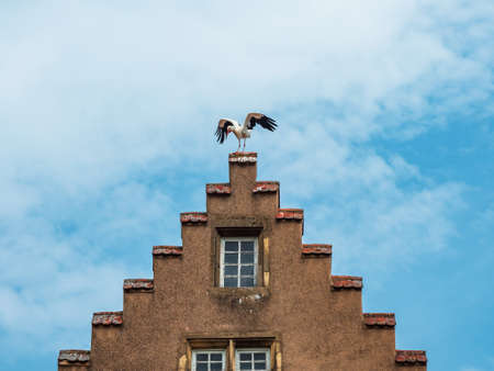 Medieval city of Rouffach in Alsace. Fortifications, towers, cathedral, old town. France. Storks sit on the roofs of old houses Standard-Bild