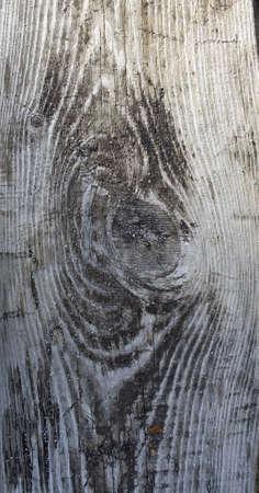 Wooden cut photo