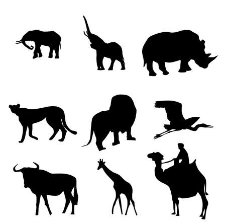 animal of the world vector silhouettes, illustration Vector