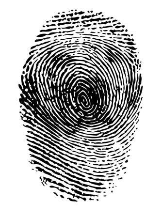 forensics: Fingerprint black on white vector illustration