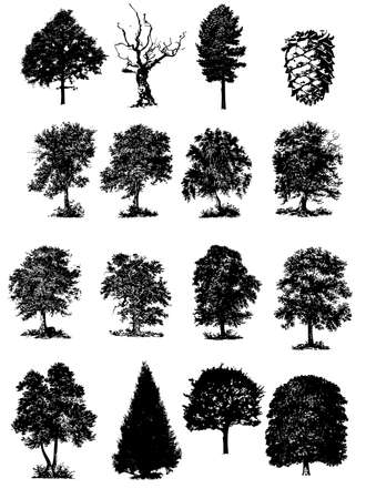 vector illustration of trees black silhouettes