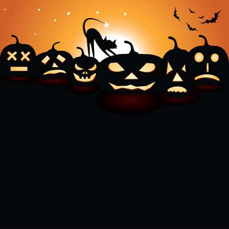 Pumpkins in der Nacht mit Mond und Katze Standard-Bild - 11093236