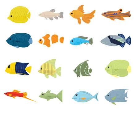 peces: Conjunto de peces tropicales en el fondo blanco. Ilustraci�n vectorial Vectores