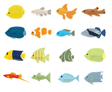 Set of Tropical Fish on white background. Vector illustration