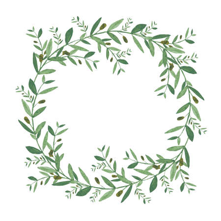 olive green: Watercolor olive wreath. Isolated illustration on white background. Organic and natural concept.