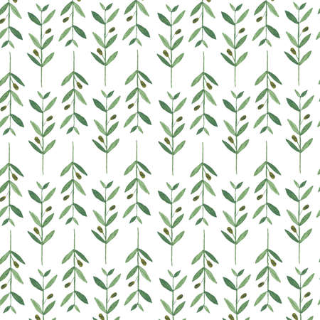 rama de olivo: patr�n de la acuarela con las ramas de olivo. Ilustraci�n sobre fondo blanco. La naturaleza y el concepto org�nico. Producto natural. Foto de archivo