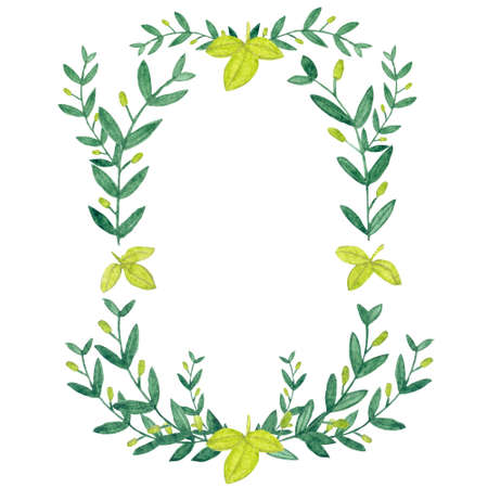 holly day: Watercolor olive wreath. Isolated illustration on white background. Organic and natural concept.