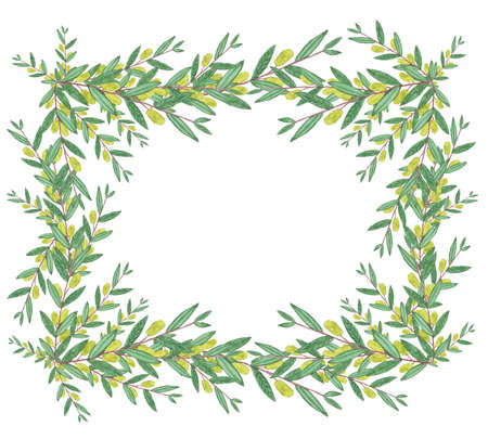 branches with leaves: Watercolor olive wreath. Isolated illustration on white background. Organic and natural concept.