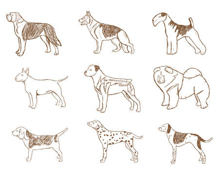 beagle terrier: Dogs Set. Vector Illustration. Cartoon Sketch Isolated on White Background.