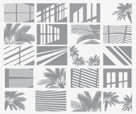 Set of Transparent Shadow Overlay Effects. Window Frames, Palm Tree and Blind. Vector Illustration.