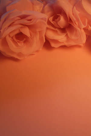 Pretty Peach Roses in the Candlelight photo