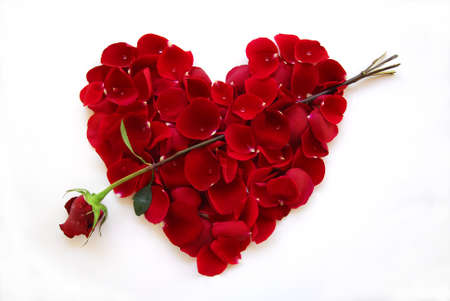 Valentine Heart Rose with water droplets