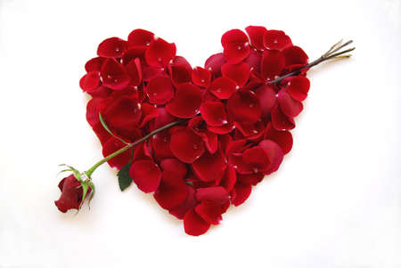 Valentine Heart with Arrow Rose with diamond ring photo