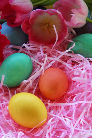 Bright Easter Eggs on Pink Grass with tulips