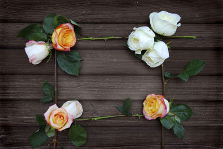 Roses and stems frame on old brown barn wood