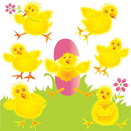 chick: Diversi�n pollitos beb� en la hierba y en el aire