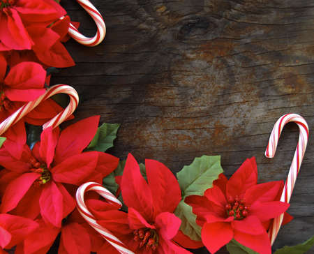 Poinsettias and candy canes on an old wood background photo