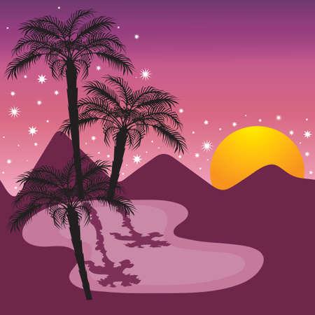 Middernacht op de oasis