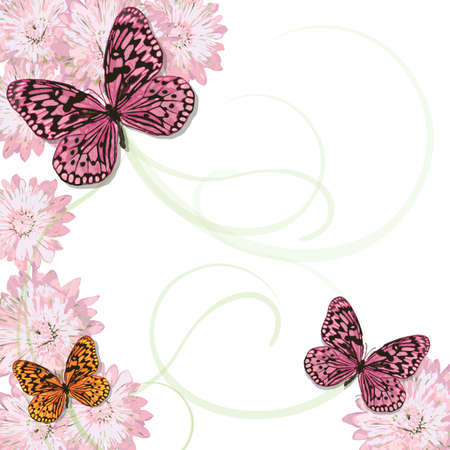 Hermosas mariposas con el patrón de remolino suave y margaritas de color rosa. Un montón de espacio de la copia