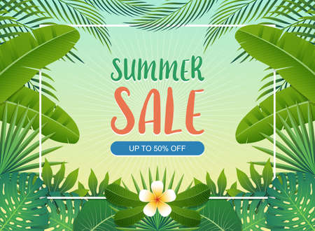 Summer sale background banner with green exotic palm leaves and tropical plants, summer sale concept. Vector illustration.